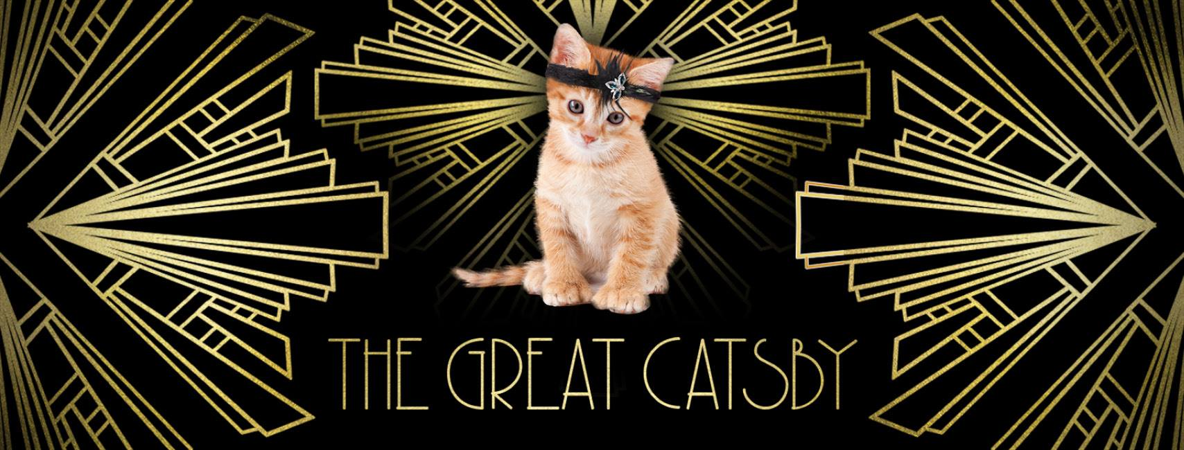 The Great Catsby Kitten Event with OK Humane Society