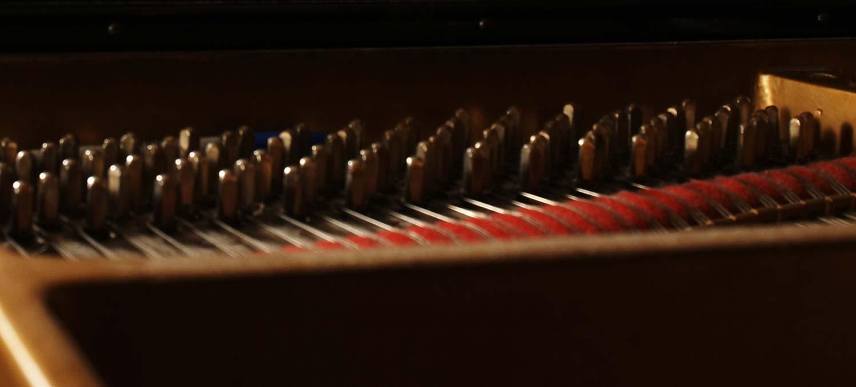 Concert Pianiast in Blu