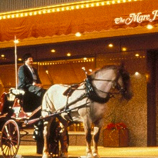 Horse and buggy outside of the Hilton Milwaukee City Center