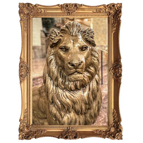 Pfister Lion